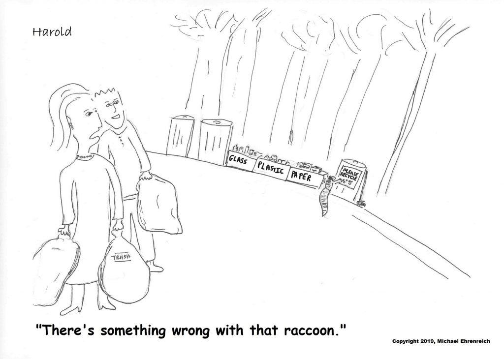 Harold Cartoon - Raccoon with garbage